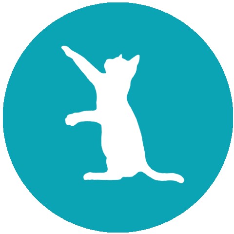 Cat Minding Service