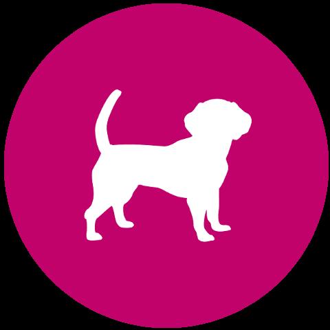 Perfect Dog Icon